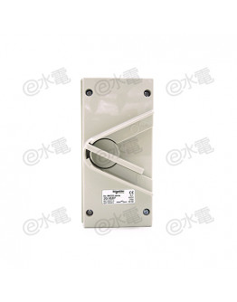 Schneider Electric Kavacha 440V 20A Double Pole Isolator Switch (Grey)