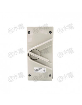 Schneider Electric Kavacha 440V 35A Double Pole Isolator Switch (Grey)