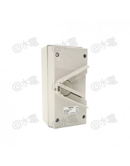 Schneider Electric Kavacha 440V 35A Triple Pole Isolator Switch (Grey)
