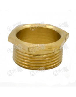 COT 25mm Light Brass Male Brass