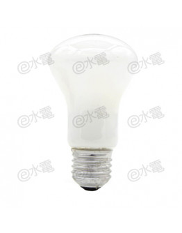 Philips Superlux incandescent lamp 100W E27 (Frosted)